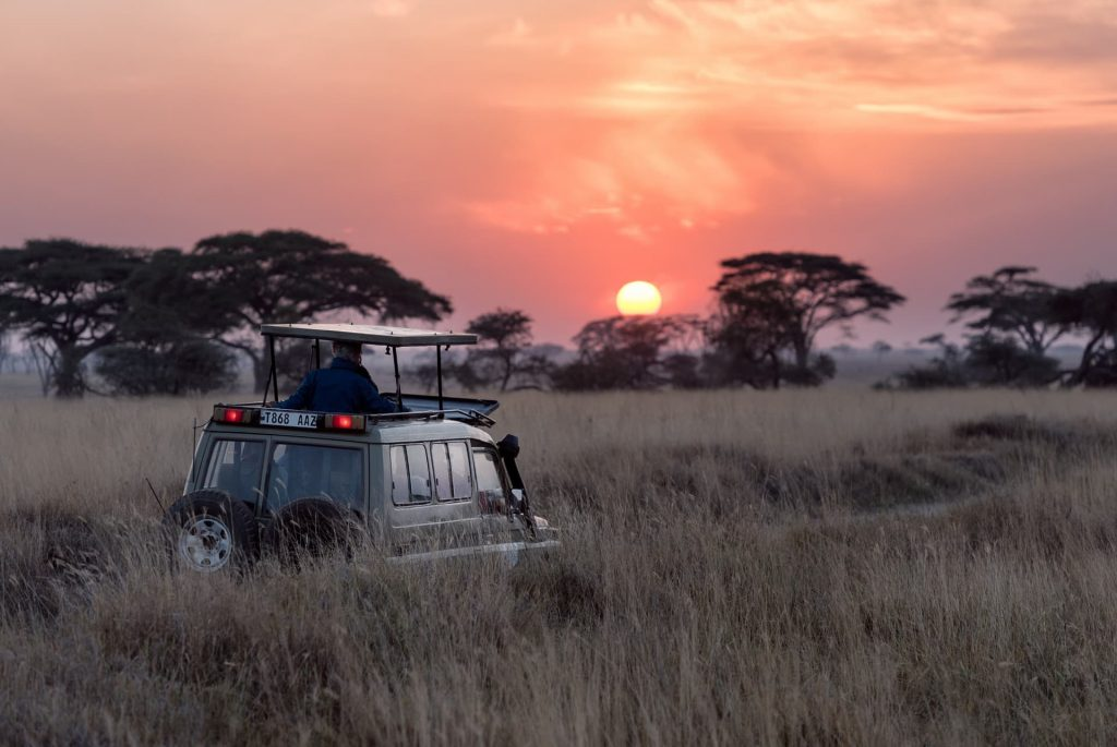 Game-Drive-Activity-in-Serengeti-National-Park-1024x685